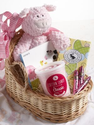 Baby Girl Congratulations Gift Basket