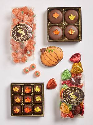 Box of fall themed chocolates