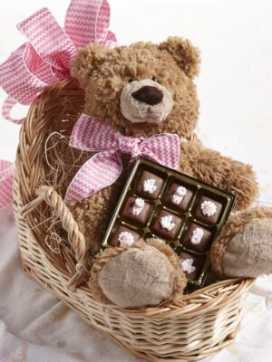 Classic Teddy Baby Basket